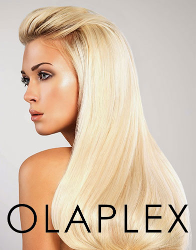 olaplex vero beach hair salon